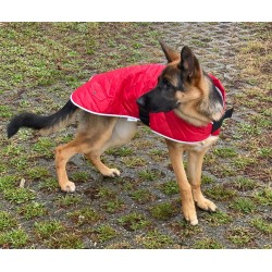 Happy Pet  Quilted Classic Cappotto