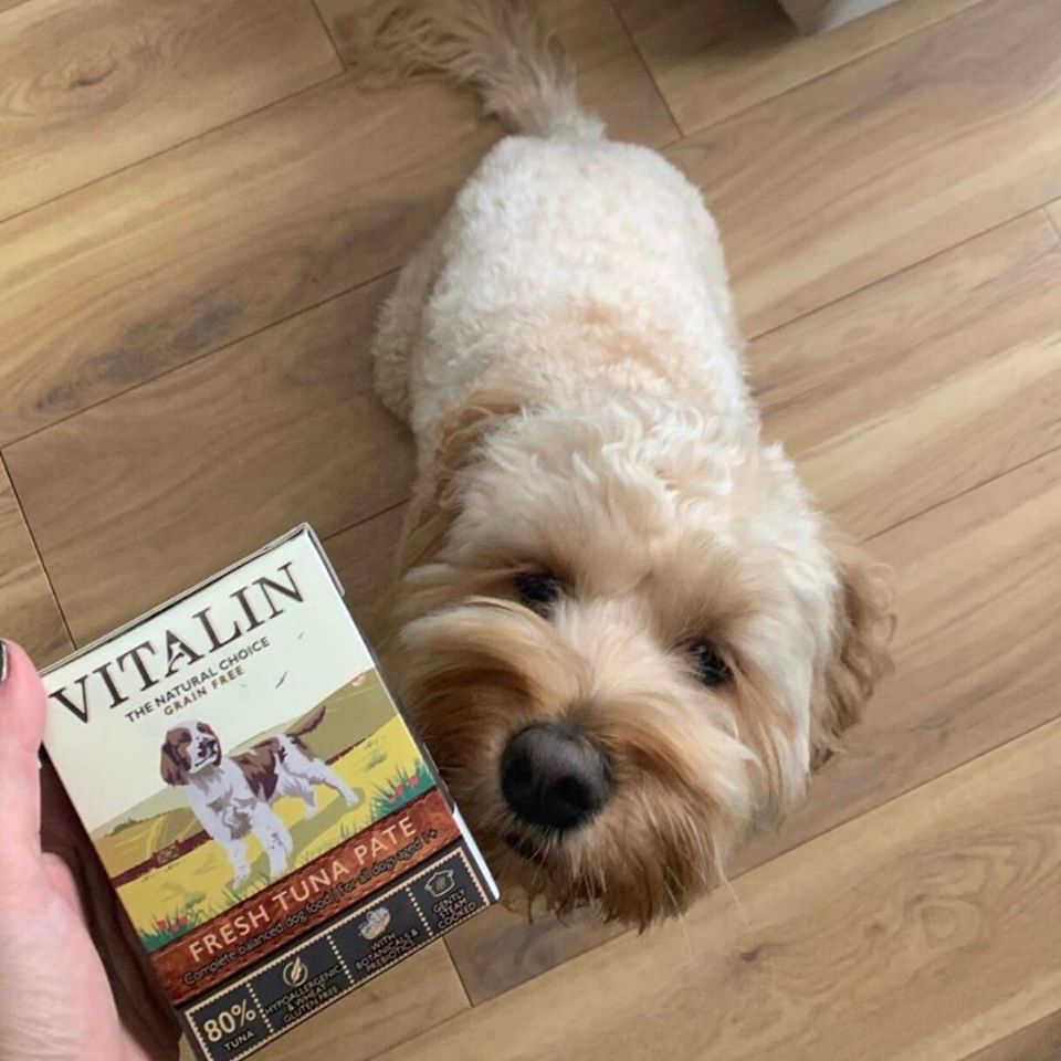 Annonces! Vitalin Pet Foods