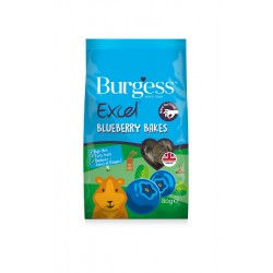 Burgess Bluberry Excel