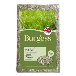Excel Forage