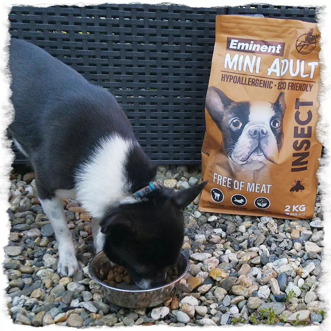 NOVITA'! Vitalin Pet Foods